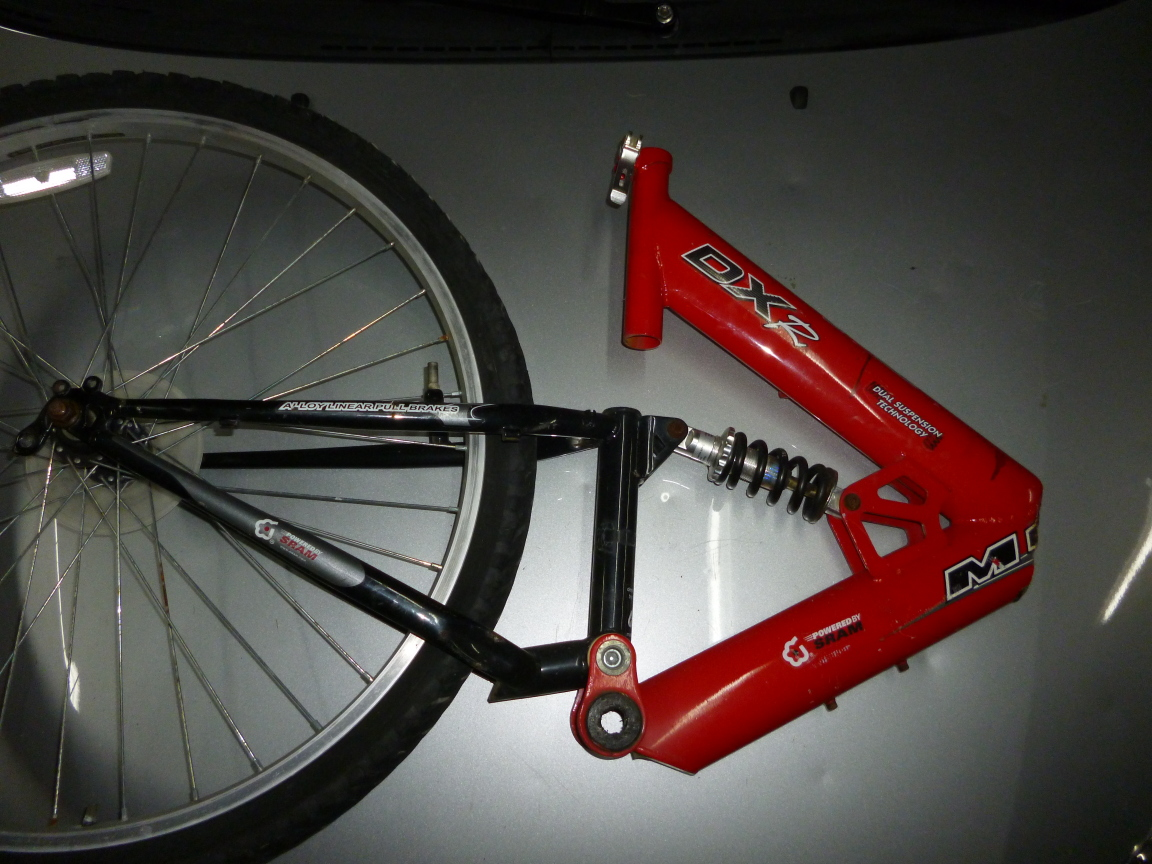Tricycle bachetta adult agree, rather